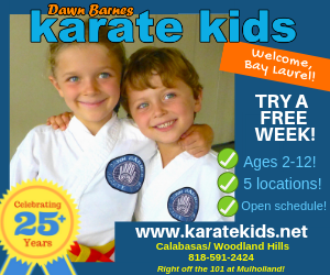 Bay Laurel Sponsors | Dawn Barnes Karate Kids